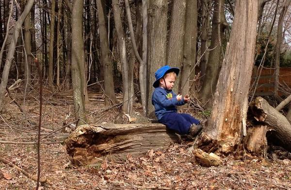 Eastern Ridge School toddler in woods