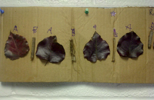 leaves as patterns first grade