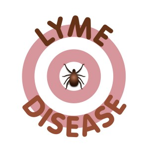 Lyme banner
