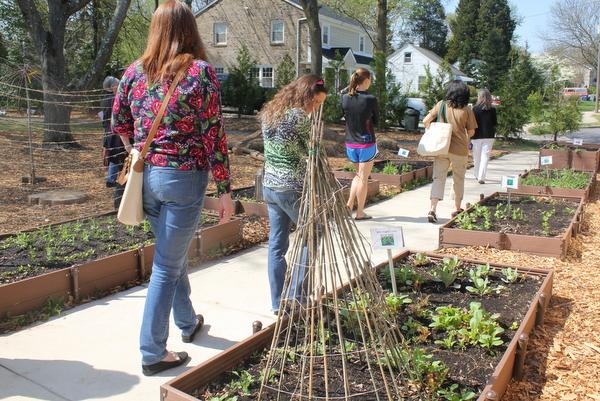 Westlawn elementary garden