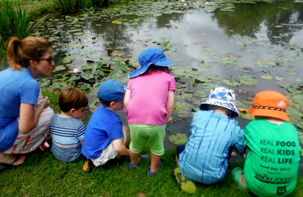 Kenilworth Aquatic Gardens looking for wildlife