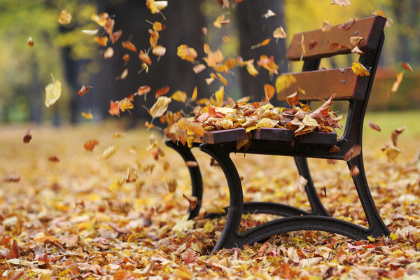 How to find balance during fall, the Ayurvedic vata season