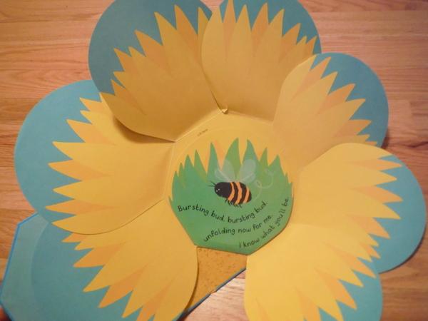 Big Yellow Sunflower open