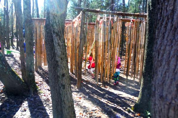 Ticonderoga Farms bamboo