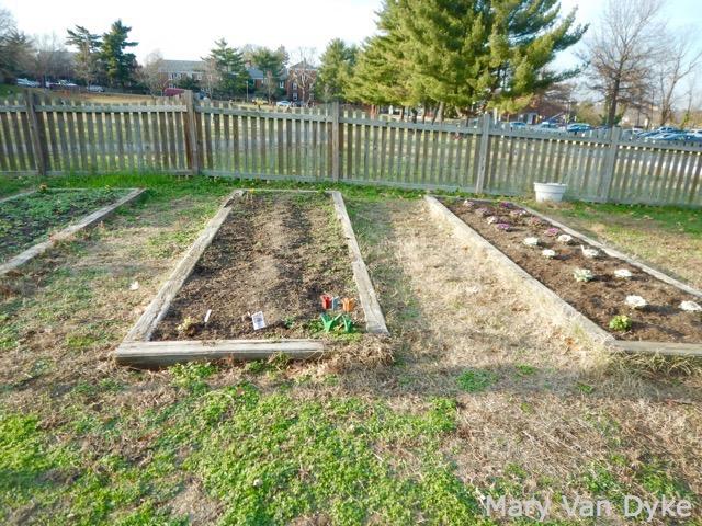Abingdon Elementary garden bed