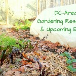 Gardening: a year-round affair! Local resources and upcoming events