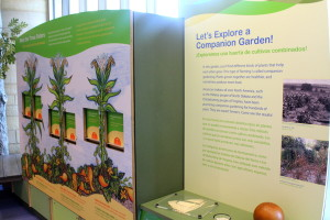 National Museum of the American Indian - Garden - Mindful Healthy Life - Jessica Claire Haney