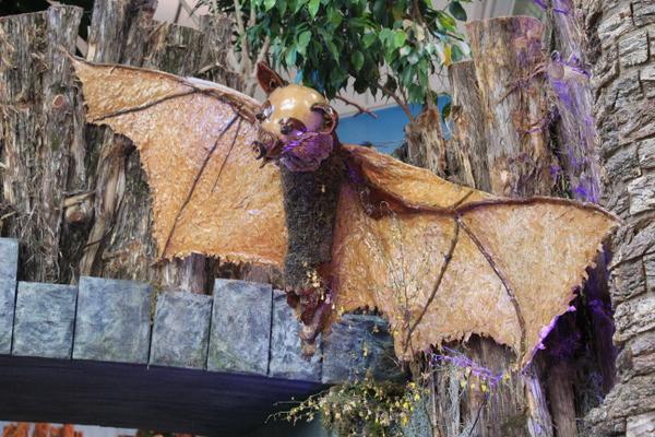 US Botanic Garden Pollinators 2015 Jessica Claire Haney - bat