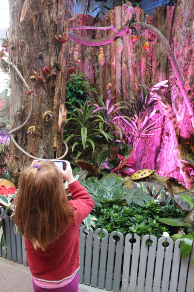 US Botanic Garden Pollinators 2015 Jessica Claire Haney - child taking photo