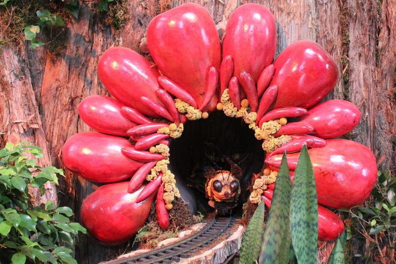 US Botanic Garden Pollinators 2015 Jessica Claire Haney