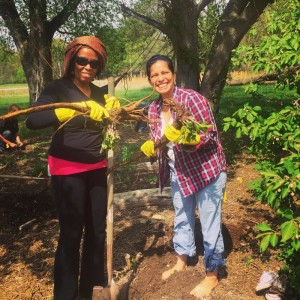 Grassroots Herbal Apprenticeship Program Year 1 @ Centro Ashé Farm        