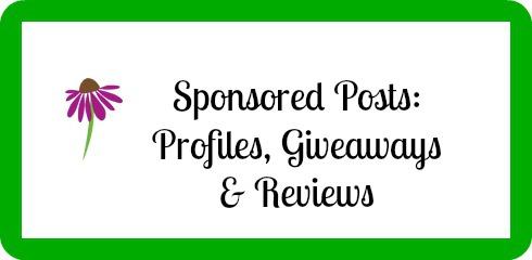 sponsored posts - details