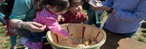 Spring Fest Fairfax @ Sully Historic Site | Chantilly | Virginia | United States