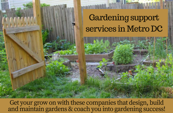 Local gardening companies help you get your garden in gear local gardening companies help you get your garden in gear workwithnaturefo