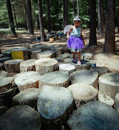 Annmarie Sculpture Garden tree stumps
