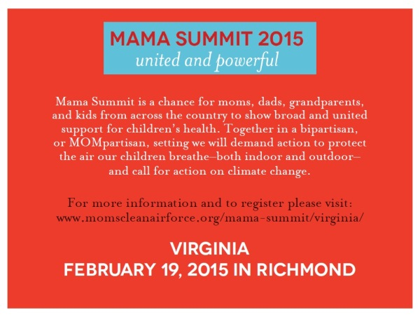 virginia_mama_summit_card