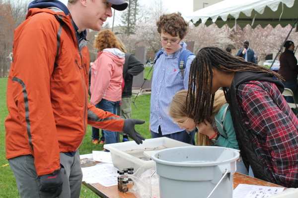 NoVA Outside School Environmental Action Showcase critters in water