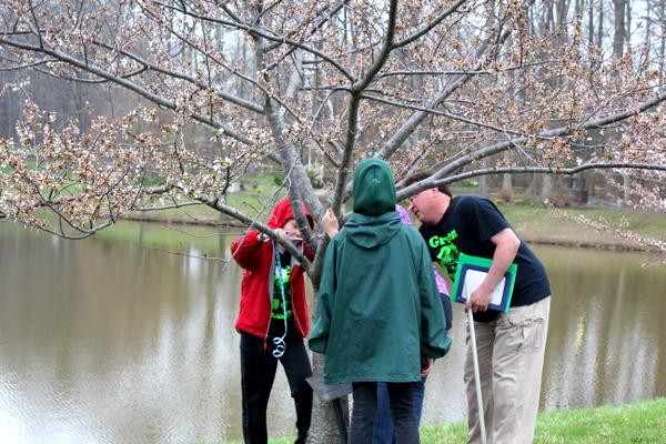NoVA Outside School Environmental Action Showcase measuring tree
