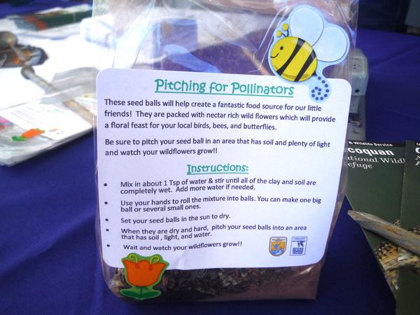MOM's Organic Market Woodbridge Opening - seed balls - Mindful Healthy Life