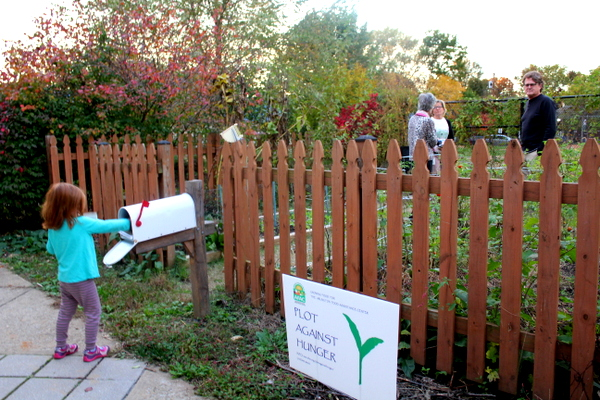 Patrick Henry Elementary School APS School Garden Meetup Plot Against Hunger November 2015