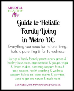 Mindful Healthy Life Guide to Holistic Family Living in Metro DC - book cover border