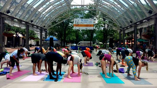 2016 Love Your Body Yoga Festival forward fold