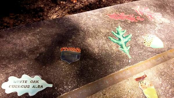 Annmarie Sculpture Garden bench with leaf imprints