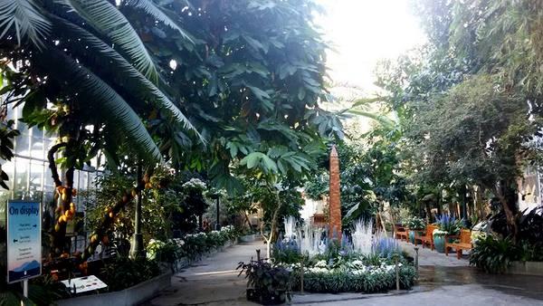 us-botanic-gardens-seasons-greenings-2016-mindful-healthy-life-washington-monument
